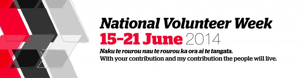 NVW 2014_Website Banner_FULL