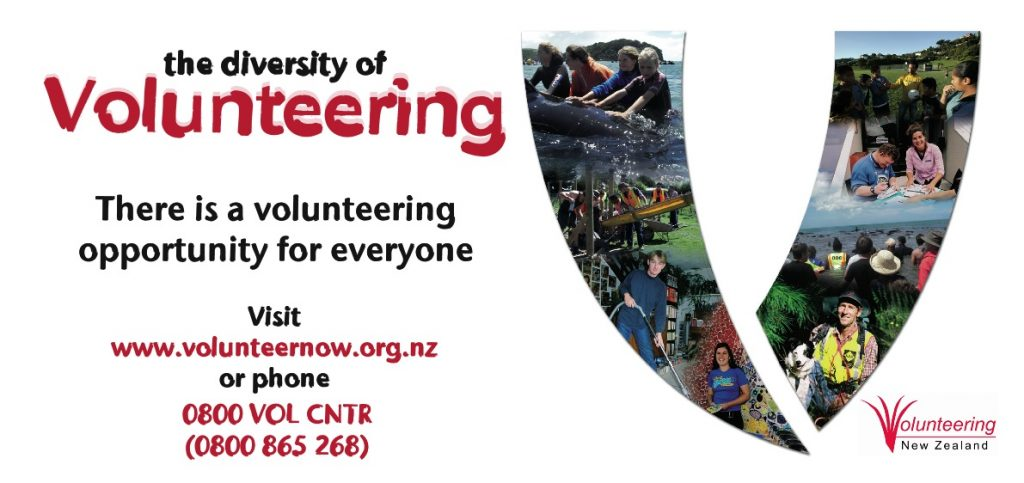 Volunteering DL Flyer_front